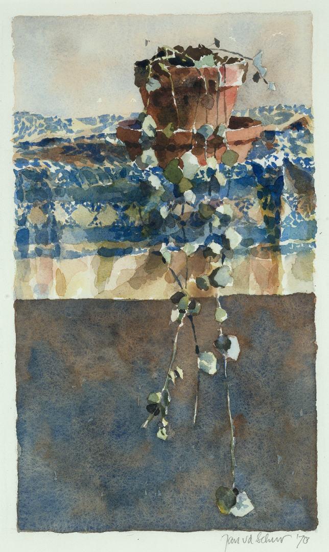 1978 Cerupegia (43 X 27 cm) 8986w