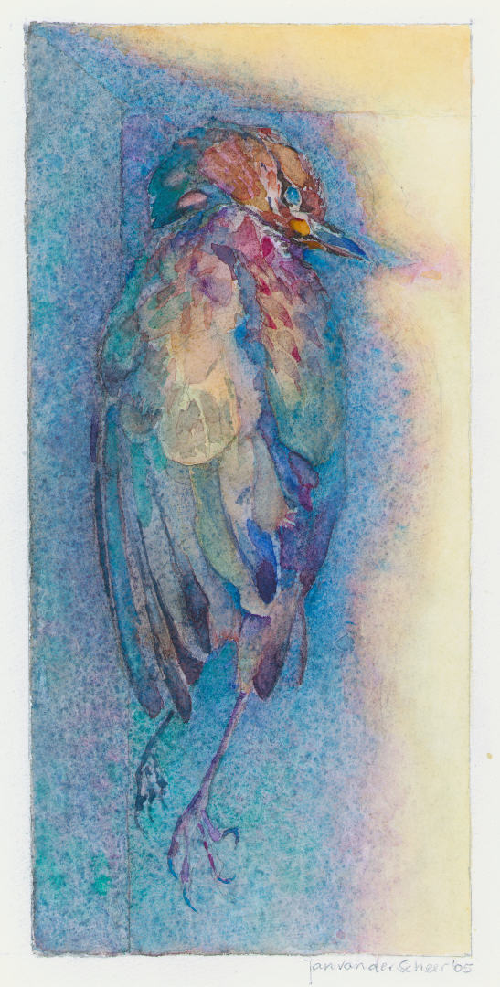 2005 Dood vogeltje (23 X 11 cm) 8411w