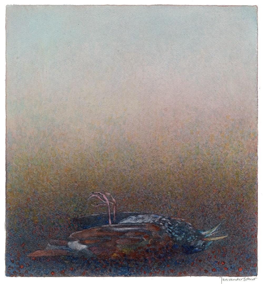 2011 Dode spreeuw (30 X 28 cm) 16797w